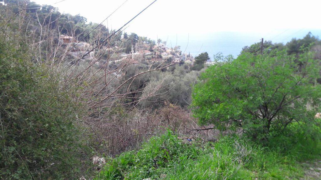 Uzunyurt Faralya Köyler