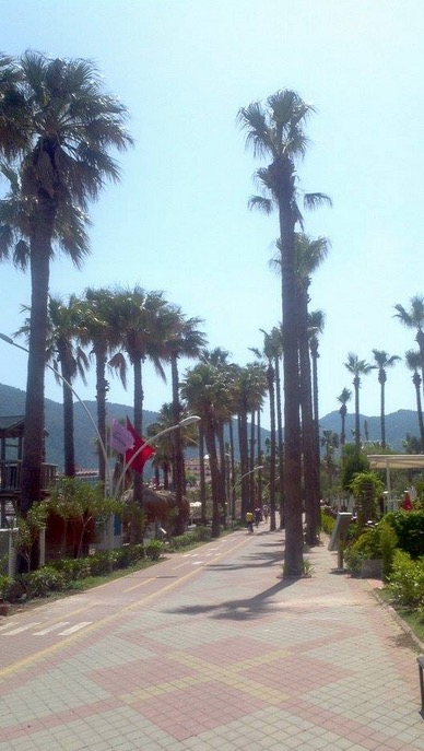 one the way to içmeler from marmaris