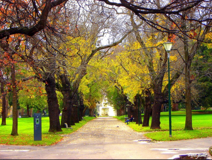 beautiful parks in melbourne autumn