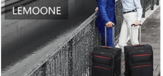 Lemoone Luggage Set II